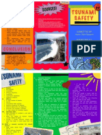 Tsunami Safety - AJ