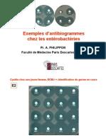 Exemplles d''antiibiiogrammes