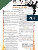 CONVOCATORIA GRITA PLUMA JOVEN