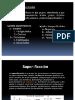 clase4-lipidos-