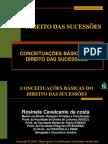 Aula1 - Conceituacoes Basicas Do Direito Das Sucessoes