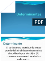 presentacion Determinantes