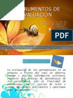 INSTRUMENTOS_DE_EVALUACION