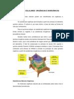 INCLUSÃO CELULARES ORGÂNICAS E INORGÂNICAS