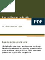 Biomoleculas diapositivas