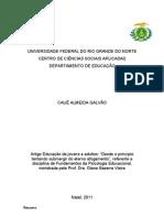 Artigo Cauê Almeida Galvão