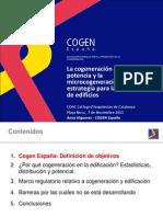 13 COGEN - Anna Higueras