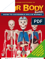 How to Assemble Billie Bones