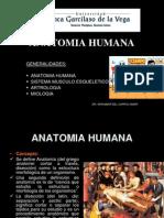 (clase 1)Generalidades Anatomia[1]