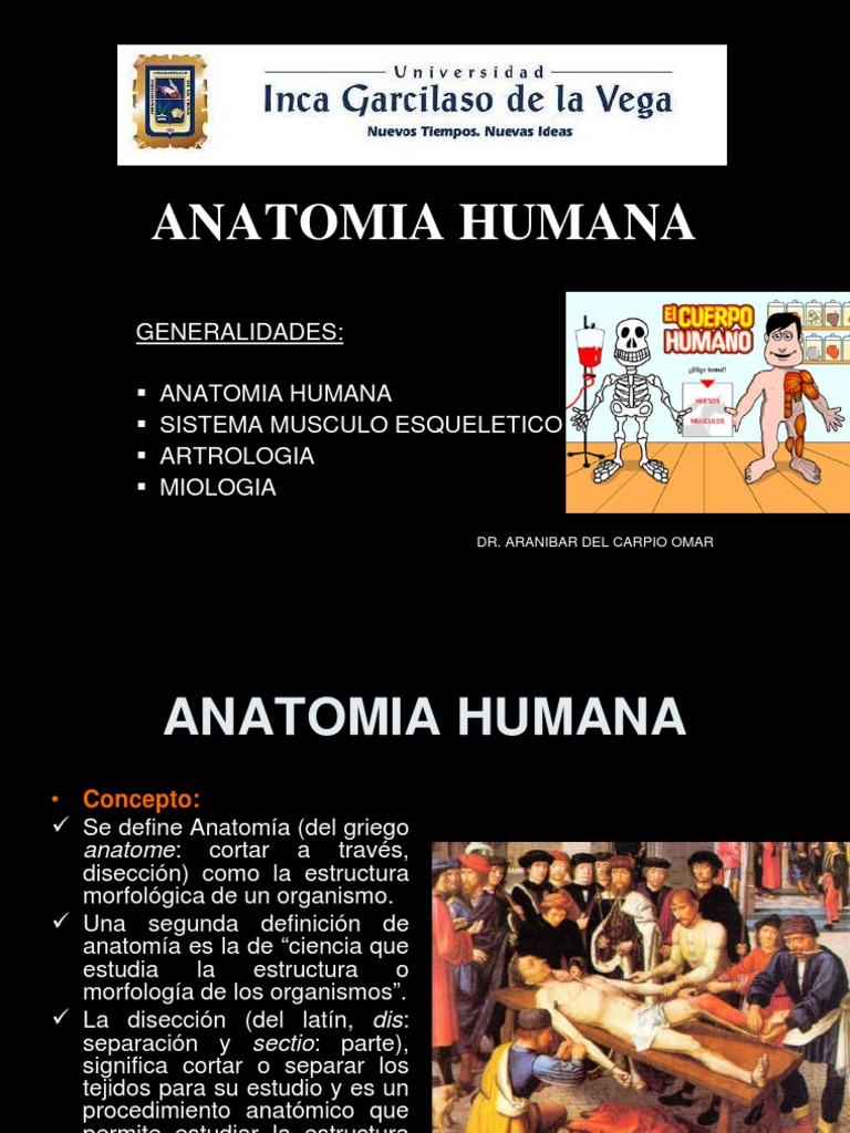 clase 1)Generalidades Anatomia[1]