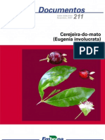 documento_211