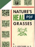 Nature's Healing Grasses