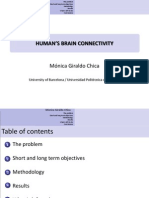 Human Brain Connectivity Summary