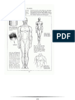 anatomy drawing  Part ( 3 )