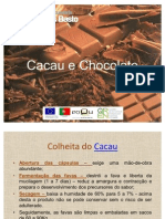 Cacau e Chocolate