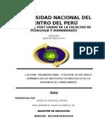 Informe Final Wanka (2)