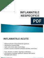 LP4-inflamatii nespecifice