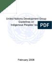 UNDG Guidelines Indigenous FINAL