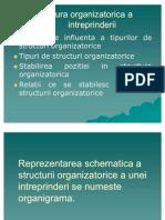 Structura Organizatorica a Intreprinderii