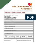Modelo Formatos Para Las Auditorias