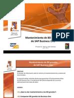 MANTENIMIENTO_DB_GRANDESB1_2