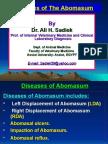 Diseases of the Abomasum for Vet. Student by Ali Sadiek