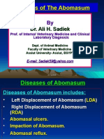 Diseases of the Abomasum for Vet. Student by Ali Sadiek