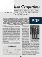 470 Capstick Perspectives