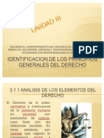 Identificacion de Los Principios Generales Del Derecho