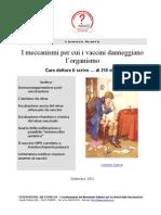 I Meccanismi Per Cui i Vaccini Danneggiano Organismo