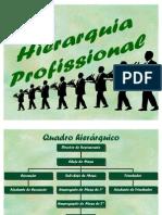 hierarquia_profissional