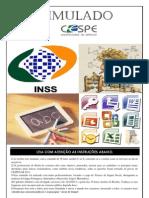 INSS Simulado-I
