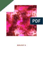 Biology a Portfolio Hints and Strategies (1)