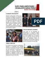 Bancada Nacionalista Gana Perú - Boletin Nº 09