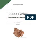 relatorio quimica 12
