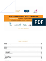 Skoun 2010 Situational Needs Assessment