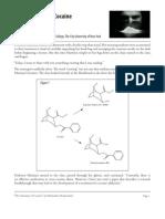 Brahmadeo Dewprashad- The Chemistry of Cocaine