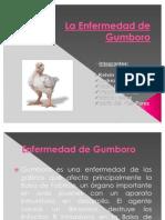 La Enfermedad de Gumboro[1]