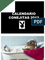 CALENDARIO CONEJITAS 2012