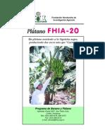 fhia-20