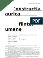 Constructia_aurica
