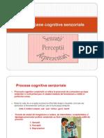3.Procese Cognitive Senzoriale - Senzatii, Perceptii Reprezentari