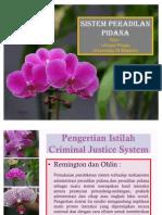 Sistem Peradilan Pidana
