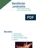 Mandibular Landmarks