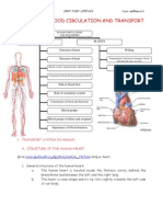 Chapter 2 Blood Circulation Doc2