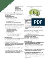 Biology 3 (Pn. Mahanom)