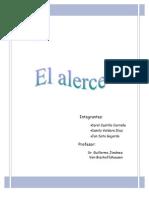 Informe Alerce Carol Castillo, Jan Soto, Camila Valdera.