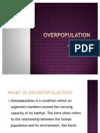 overpopulation essayoverpopulation
