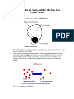 Cell Diffusion & Permeability - Teacher Version
