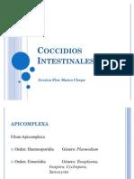 Coccidios intestinales